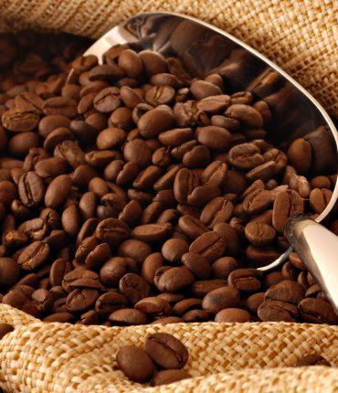 Best Organic Coffee